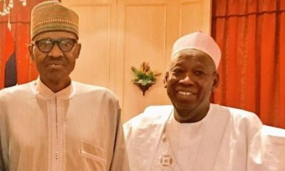 Ganduje To Buhari: Ban Cattle Movement From North To South