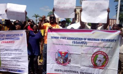 NASU, SSANU To Embark On 3-day Protest Over IPPIS, Others
