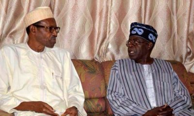 Afenifere Chieftain: Tinubu Is Afraid Of Buhari