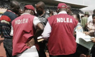 90 Suspects Arrested Over Hard Drug Possession In Lagos