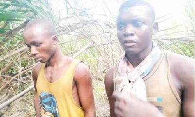 Police Uncover Shallow Graves In Benue, Arrest Kidnappers