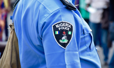 10-Year-Old Girl Killed By Hoodlums In Ilesa - Police