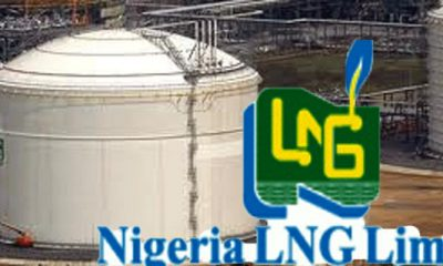 NLNG To Supply 1.1m Tonnes Of Gas Annually