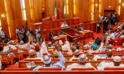 Senate Approves Creation Of Emergency Medical Services