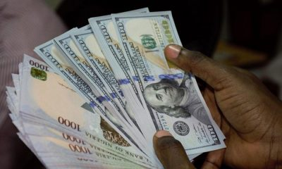 Naira To Dollar: Nigerian Local Currency Gains After 2-day Slip
