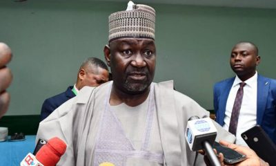 FG Workin Hard To Deliver Steady Electricity To Nigerians - Minister